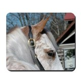 Roan Walking Horse Mousepad
