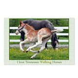 I love TN Walking Horses Postcards (Package of 8)