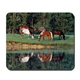 Horse Reflection Mousepad