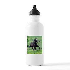 Walking Horse in Spring Water Bottle