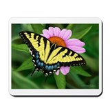 Tiger Swallowtail Mousepad