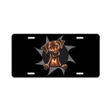 Chocolate Lab Burst Aluminum License Plate