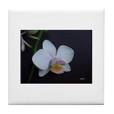 Fine art photography Tile Coaster