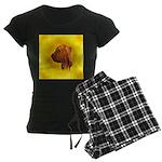 Beautiful Bloodhound Head stu Women's Dark Pajamas