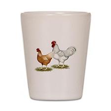 Golden Sex-link Chickens Shot Glass