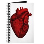 Vintage Anatomical Human Heart Journal