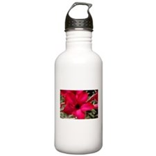Hot Pink Lily Water Bottle