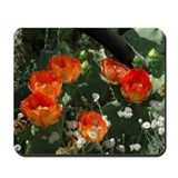 Orange Prickly Pear Mousepad