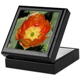 Orange Prickly Pear Keepsake Box