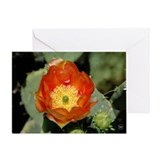 Orange Prickly Pear Greeting Card