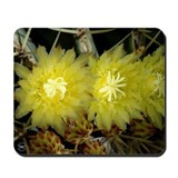 Barrel Cactus Flowers Mousepad