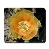 Prickly Pear Flower Mousepad