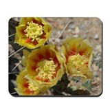 Yellow Prickly Pears Mousepad