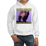 Grizzly Bear YNP Hooded Sweatshirt