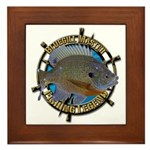 Bluegill Master Framed Tile