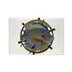 Bluegill Master Rectangle Magnet (100 pack)