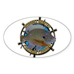 Bluegill Master Sticker (Oval 50 pk)
