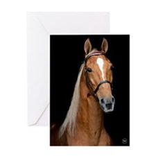 Sorrel Horse Greeting Card