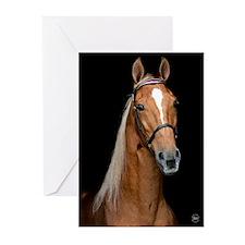 Sorrel Horse Greeting Cards (Pk of 20)