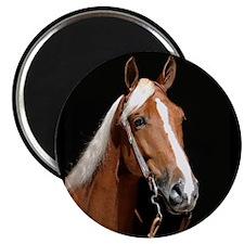 "Chestnut Horse 2.25"" Magnet (100 pack)"