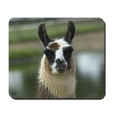 Brown and White Llama Mousepad