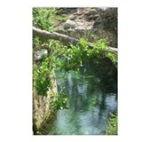 River at Xcaret Postcards (Package of 8)