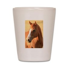 horse Shot Glass