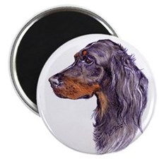 Magnet with a portrait of a Gordon Setter