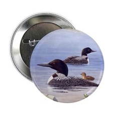 Loons with Chick Button
