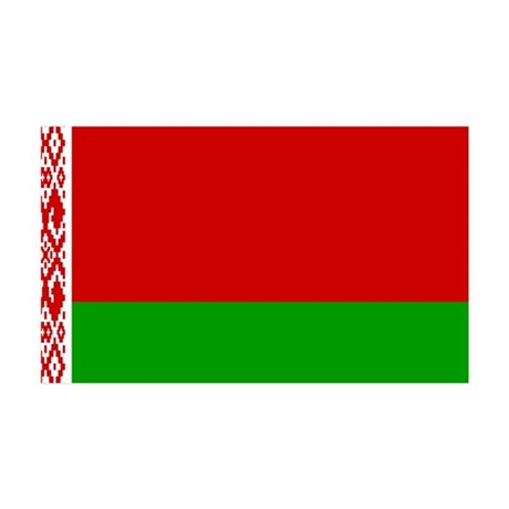 Belarus Flag 38.5 x 24.5 Wall Peel