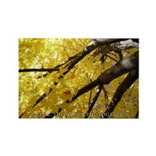 Yellow Leaves Rectangle Magnet