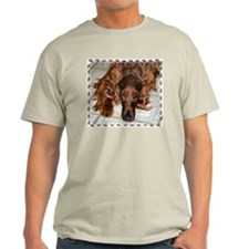 Irish Setters Ash Grey T-Shirt