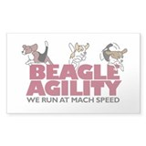 Beagle Agility Decal