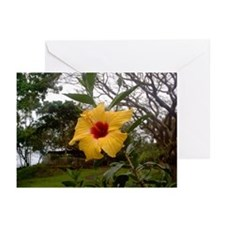 Yellow Hibiscus Greeting Cards (Pk of 10)