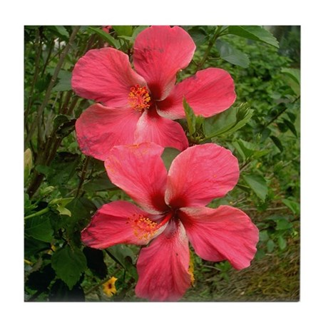 Twin Hibiscus Tile Coaster