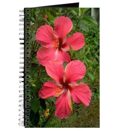 Twin Hibiscus Journal