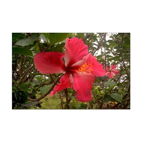 Red Hibiscus Mini Poster Print
