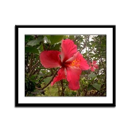 Red Hibiscus Framed Panel Print