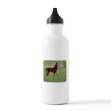 Foal 9P030D-197 Water Bottle