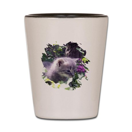 Gray Kitten Shot Glass