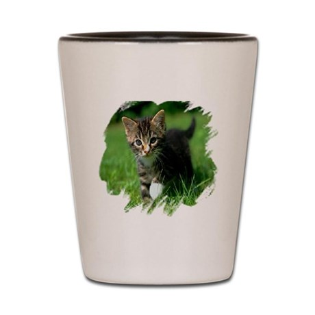 Baby Kitten Shot Glass