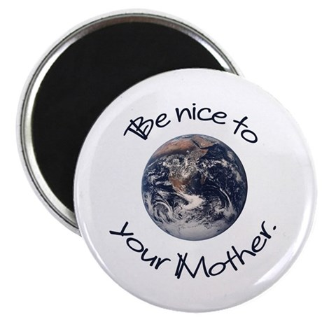"Be Nice 2.25"" Magnet (10 pack)"