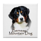 Bernese Mountain Dog Tile Coaster