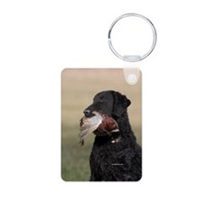Curly Coated Retriever-6 Keychains