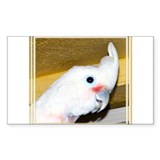 Goffin Cockatoo Rectangle Decal