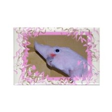Goffin Cockatoo Rectangle Magnet