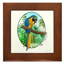 Macaw-BG Framed Tile