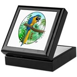 Macaw-BG Keepsake Box