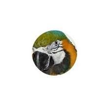 Blue an Gold Macaw Mini Button