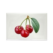 Cherries Cherry Rectangle Magnet